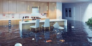 water damage restoration charleston, water damage charleston, water damage repair charleston