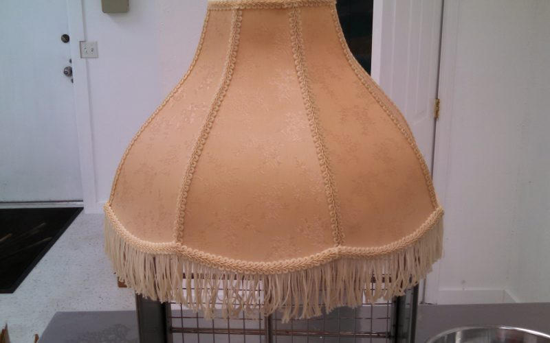 contents cleaning lamp shade after