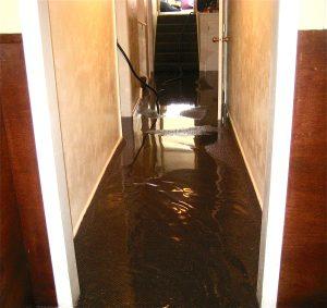 flooded basement north charleston