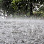 water damage charleston, water damage cleanup charleston