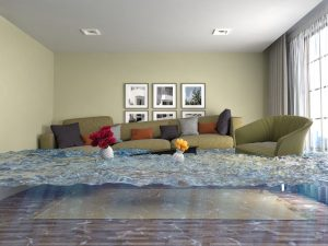 water damage restoration north charleston, water damage cleanup north charleston