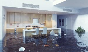 water damage restoration mount pleasant, water damage cleanup mount pleasant, water damage repair mount pleasant