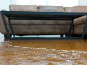 water damage restoration mount pleasant, water damage repair mount pleasant, water damage cleanup mount pleasant